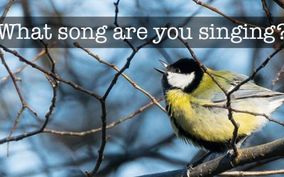 What song are you singing?